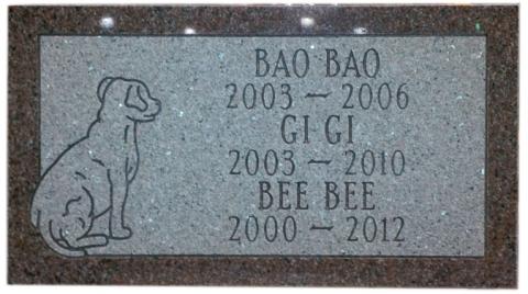 Pink Marker, Condensed Roman Font, Bao Bao - Gi Gi & Bee Bee